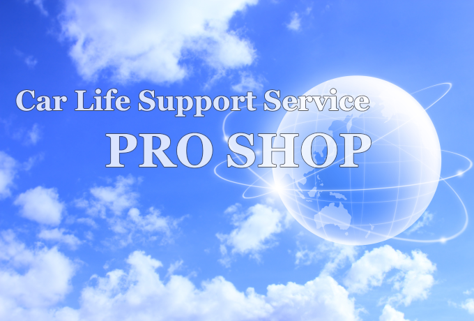 Car Life Support Service PRO SHOP